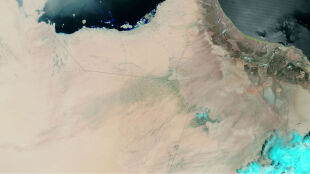 Woda zalała pustynię i zabiła 18 osób