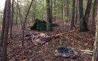 Wreszcie można legalnie biwakować w lesie