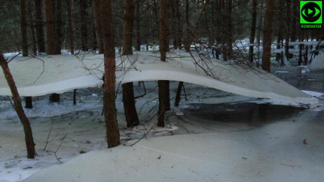 """Lód """"lewitował"""" nad powierzchnią jeziora. Przykleił się do drzew"""