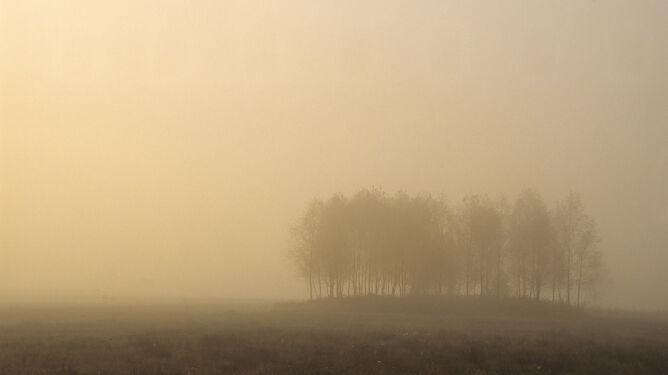 Gęste mgły utrzymują się nadal na wschodzie i południu