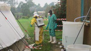 Trwoga Afryki Zachodniej. Epidemia Eboli najtragiczniejsza w historii