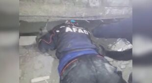 Ratownicy wyciągnęli kota z zawalonego budynku